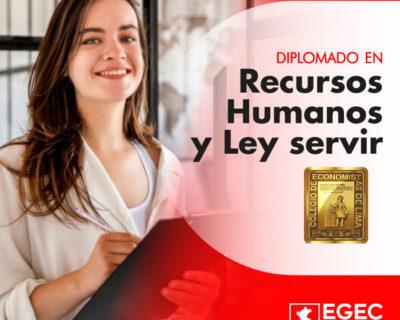 Diplomado en Recursos Humanos y Ley Servir